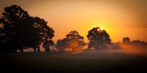 Landscape Color-5169