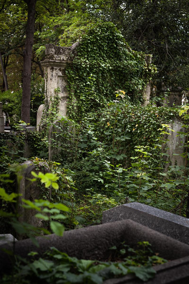 ludwigdesmet-Paris-0824