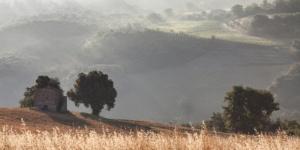 Landscape Color-6670